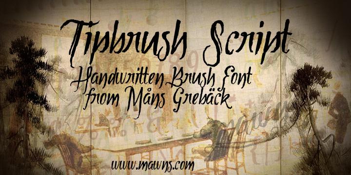 Tipbrush Script font
