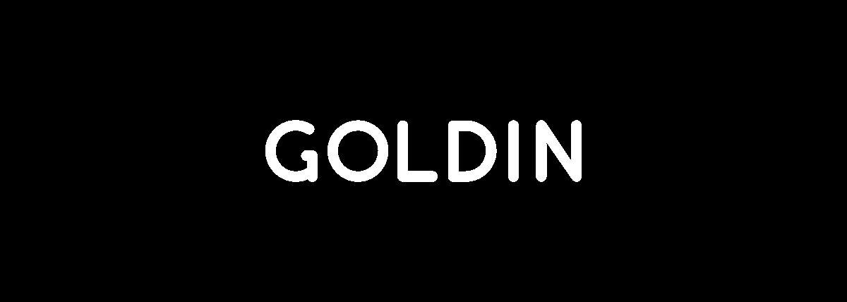 Goldin-Regular font
