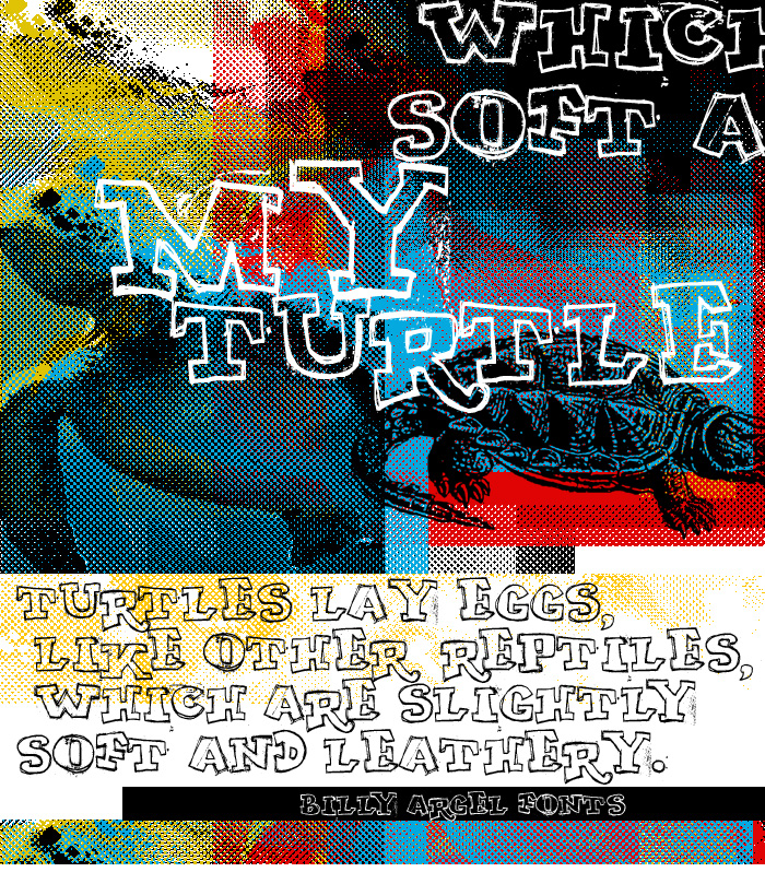 My Turtle font