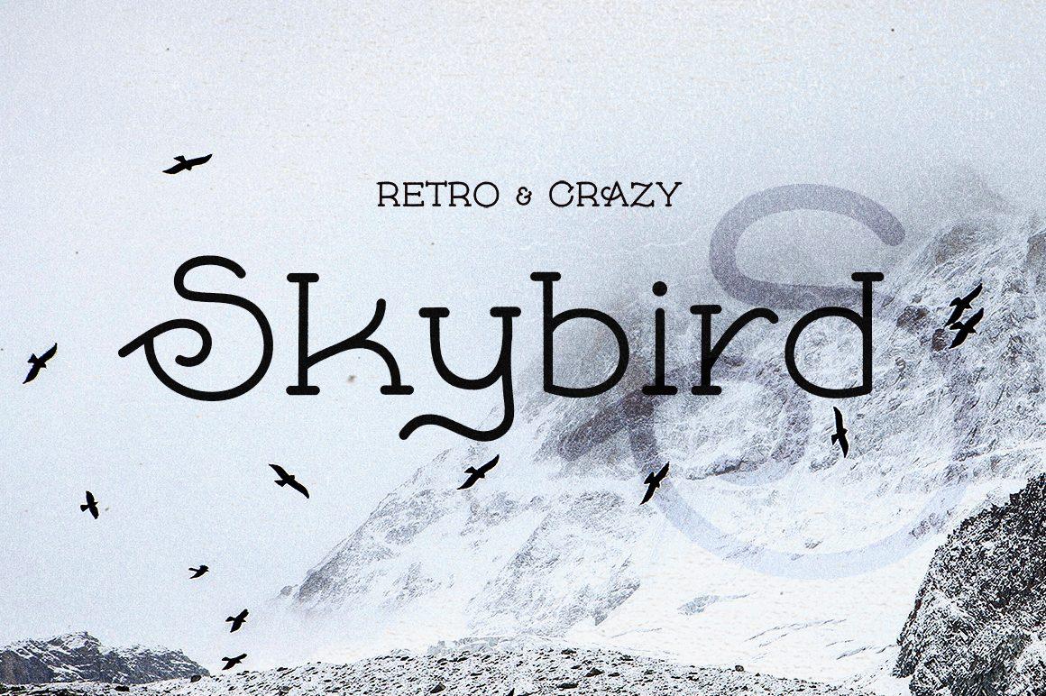 Skybird Rough font