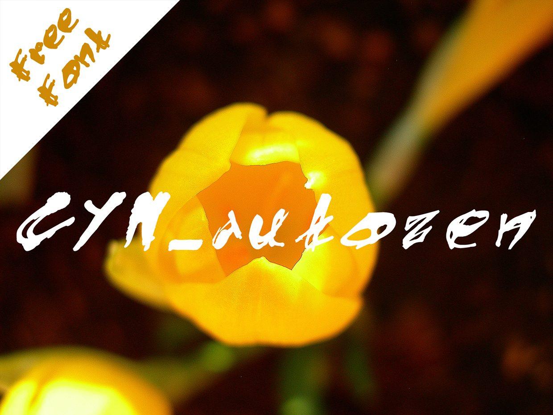 CYN_autozen_bold font